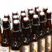 Мини-пивоварня Inpinto Master Pro